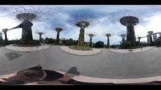 Singapore City, Garden, Garten, Lawn And Garden, Gardens, Gardening, Outdoor, Yard, Tuin