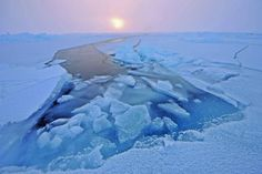 Arctic Sea Ice - Martin Hartley