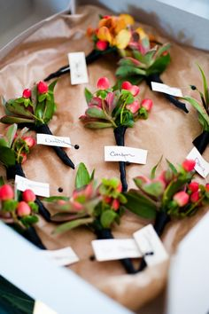 Photo by Cory Ryan. Boutonnieres by Rosehip Flora.