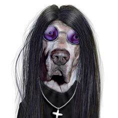 Famous-person-in-the-guise-of-an-animal-008 - Ozzy Ousbourne