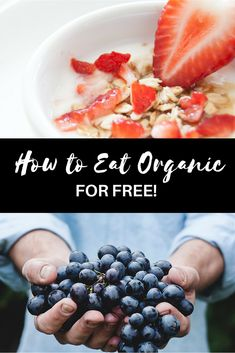 How to buy organic f