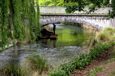 Punting on the Avon River in Christchurch New Zealand. Christchurch New Zealand, One Week, Garden Bridge, Avon, Outdoor Structures, Australia, River, News, Rivers