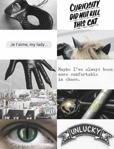 """chat noir 