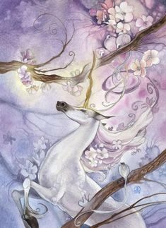 Stephanie Pui-Mun Law - Shadowscapes