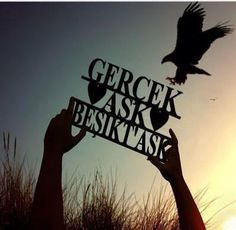 BEŞİKTAŞ Black Eagle, Bff, Black And White, Wallpaper, Instagram, Google, Turkey Country, Black White, Wallpaper Desktop