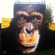Mural en Vitoria-Gasteiz, Euskadi Basque Country