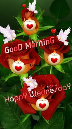 Wednesday Morning Greetings, Wednesday Morning Quotes, Good Morning Happy Saturday, Happy Wednesday, Good Morning Beautiful Images, Morning Images, Beautiful Flowers, Christmas Ornaments, Holiday Decor