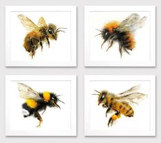 Set of 4 - Honey Bee Bumble Bee Watercolor Giclee Prints - Wildlife Illustration Honey Bee Tattoo, Bee Drawing, Bee Art, Spring Sign, Spring Door, Save The Bees, Bee Keeping, Botanical Prints, Giclee Print