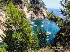 Without a doubt, and far beyond its natural beauty, the beach of Es Castell, in Palamós, has an undeniable importance in the future of the Costa Brava.Today I present to you what is considered the…