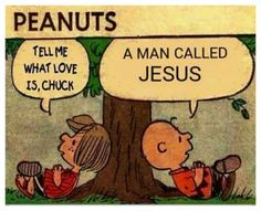 In the end Jesus fulfills all the laws and a core value which can be found in all the moral laws is love