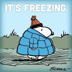 It's freezing.