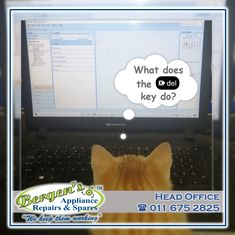Curious little Cat…delete is not always a bad thing, sometimes we just need to click delete and start on a brand-new page. At Bergens we run a tight ship, all our deliveries are carefully planned to ensure you receive your appliance back in the shortest time possible. #wekeepthemworking #bergensappliances #appliancerepair #appliancepart #wefixappliances #delete #bergenscat #cat #October #deliveries #collections #recycle #recycleappliance #repairtech #wefixit #quote #southafrica #inthekitchen Appliance Repair, Appliance Parts, North Bergen, Kempton Park, Creating Communities, Domestic Appliances, Home Automation, Solar Energy, Branches