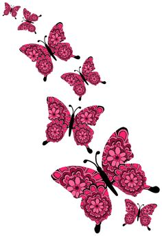 #butterflies#