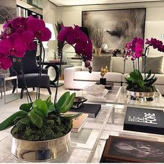beautiful orchids in living room Home Living Room, Living Room Designs, Living Room Decor, Apartment Living, Living Room Inspiration, Home Decor Inspiration, Decor Ideas, Decorating Coffee Tables, Home Interior Design