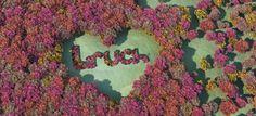 http://blog.liruch.com/unicamente-dejare-de-amarte-cuando-tenga-evidencias-claras-de-que-alguien-te-quiere-tan-solo-un-poquito-mas-que-yo/