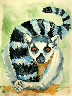 Original watercolour painting Lemuranimal