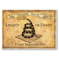 Liberty or Death, Don't Tread on Me, History American Revolutionary War, American War, Early American, American History, American Spirit, Colonial America, Dont Tread On Me, Us History, History Photos