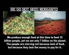 We do not need Monsanto. We produce enough food at this time to feed 12 billion people, yet we are only 7 billion on the planet. The people are starving not because of lack of food, but because they lack the money to pay for it. Genetically Modified Food, Knowledge Is Power, Our World, Go Green, Social Justice, Mother Nature, Mother Earth, Planets, Facebook