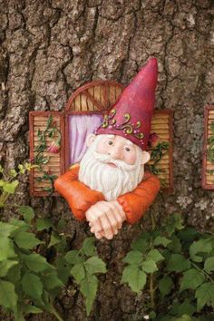 The tree Gnome