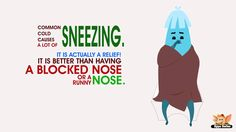 Why do you sneeze?