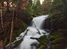 """Big Spring Creek, WA"" by Kevin Russ."