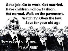 Freedom is do all that everyone does. There's no room for self-reflection insofar as our minds are dominated by what we collectively think is normal. George Bernard Shaw, Old Age, Going To Work, Thought Provoking, Got Married, Wise Words, Decir No, Me Quotes, Funny Quotes