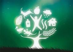 MadalBo: El ecosocialismo de los pueblos