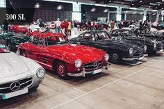 Mercedes Benz #300SL's. Via instagram (mbusa) Vintage Cars, Antique Cars, Carros Premium, Squad, Mercedes Benz 300, Luxury Suv, Car Images, Car Wallpapers, Fast Cars