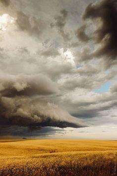 Prairie storm over canola fields, Alberta, Canada - by I.M. Ruzz, Canadian