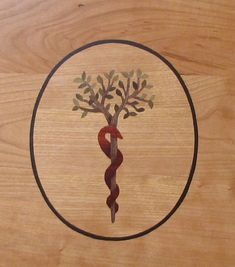 Staff of Asclepius/Tree of Life