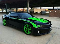 Minted camero
