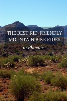 Try one of these family-friendly mountain bike rides in Phoenix, Arizona.
