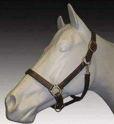 Henri De Rivel Advantage Padded Leather Halter - HAVANA - HORSE by Henri De Rivel. $27.00. Henri De Rivel Advantage Padded Leather Halter