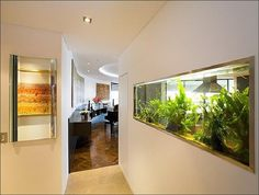 52 Modern Aquarium Partition Ideas For Living Room. Home furniture has become more modern and completely advanced nowadays, that you can have electric, automatic fireplaces, modern wall fountains, bed. Home Aquarium, Aquarium Design, Aquarium Ideas, Aquarium Decorations, Brisbane, Aquarium Pictures, Amazing Aquariums, Apartment Walls, Relaxation Room