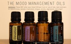 essential oils for dummys: Mood Management Oils: Balance, Elevation, Citrus Bliss and Serenity- use for stress, tension, anger, frustration, fatigue, anxiety, depression and MORE!