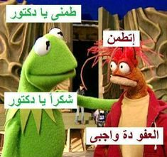 Arabic Funny, Arabic Jokes, Ex Quotes, Funny Qoutes, Kermit The Frog, Funny Comments, Color Of Life, Panzer, Iphone Wallpaper