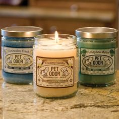 Pet Odor Exterminator Candles - These are the BEST candles ever...with or without pets they make your whole house smell fabulous!