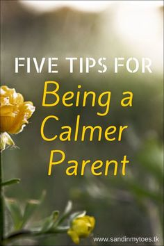 Five tips for being a calmer parent Did you catch yourself yelling at the kids again? Here are five tips to become a calmer parent, and pass on the positive vibes to your children. Tips to help you control that urge to yell, and become a calmer parent. Parenting Toddlers, Parenting Humor, Kids And Parenting, Parenting Hacks, Parenting Plan, Parenting Classes, Parenting Styles, Foster Parenting, Conscious Parenting
