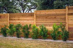 Top 50 Best Privacy Fence Ideas - Shielded Backyard Designs Privacy Fence Decorations, Diy Privacy Fence, Privacy Fence Designs, Backyard Privacy, Diy Fence, Backyard Fences, Backyard Landscaping, Backyard Designs, Fence Garden
