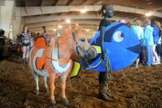 Nemo and Dory I actually promise you this will be me and my horse someday Horse Halloween Ideas, Horse Halloween Costumes, Cute Costumes, Group Costumes, Halloween Fun, Costume Ideas, Hobby Horse, My Horse, Horse Girl