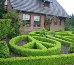 garden of peace:)