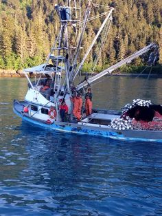 Searching for salmon in Prince William Sound.  Photo by Thomas Lopez.  www.seafoodapparel.com