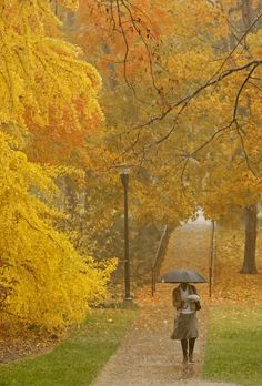 """""""Vanderbilt University - campus in the fall"""" by Vanderbilt University on Flickr ~ Rain near The Commons on Peabody campus (Vanderbilt University/ John Russell)."""