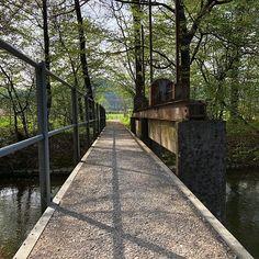 #Architektur #Architecture #Brücke #Bridge #Baum #Tree #Schweiz #Switzland