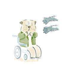 Jacqui Clark Art – Illustration and Design Clark Art, Illustration Art, My Arts, Teddy Bear, Toys, Animals, Design, Activity Toys, Animales
