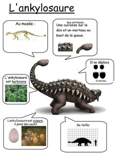 Fiche reference sur l'ankylosaure Dinosaur Activities, Dinosaur Crafts, Dinosaur Art, Activities For Kids, Science Activities, Flags Europe, Dino Park, Maila, Dinosaur Birthday Party
