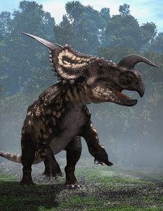 Einiosaurus was a herbivore. It lived in the Cretaceous period and inhabited North America. Its fossils have been found in places such as Montana.