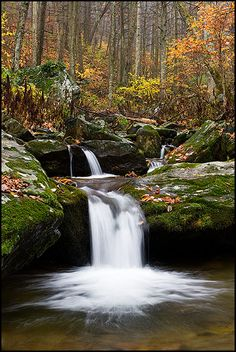Waterfall along Dark Hollow Run in Autumn, Shenandoah National Park, Virginia.