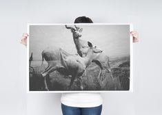 $45 / $55 - 24x36 / 36x48 inches - Antelopes Poster | Debbie Carlos Shop