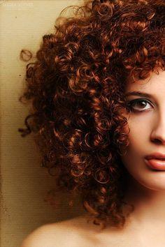 Chevaux bouclés / curls